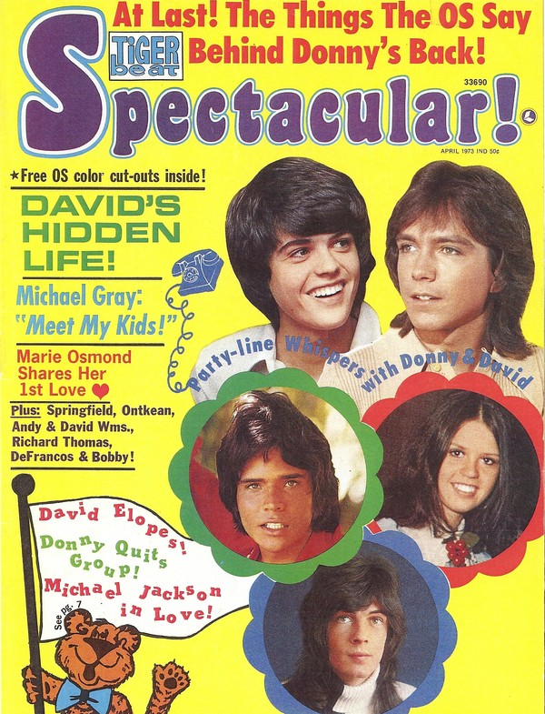 Tiger Beat Spectacular Nov. 1971 Donny Osmond David Cassidy Susan Dey  MBX2