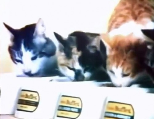 'Hey! You got peanut butter in my Turkey & Giblets!' (Friskies Buffet,1974)