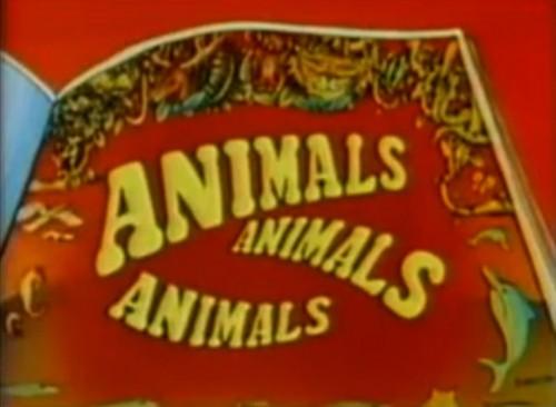 """Animals, animals, animals, animals. animals everywhere..."" ('Animals, Animals, Animals' TV title, 1976)"