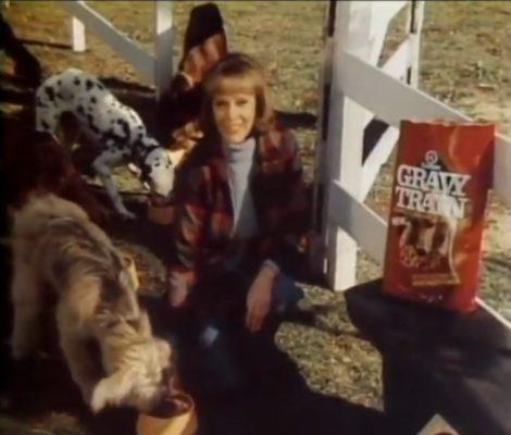 Big Bag Of Dog Food Gravy Train